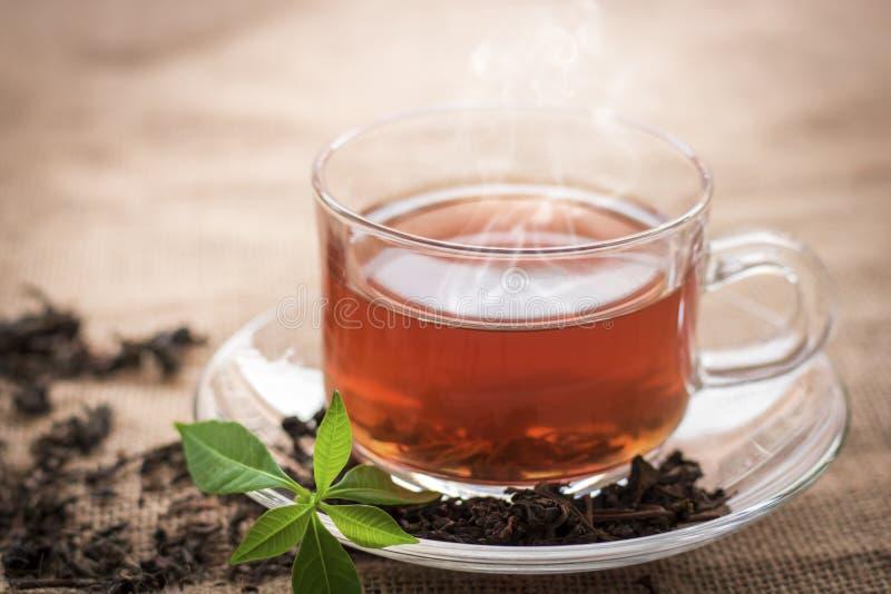 Gorąca filiżanka herbata dla przerwy zdjęcia royalty free