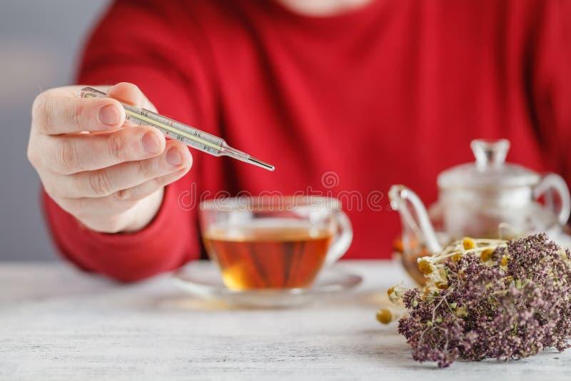 Gorąca herbata przeciw febrze Samiec patrzeje temperaturę na thermom fotografia royalty free
