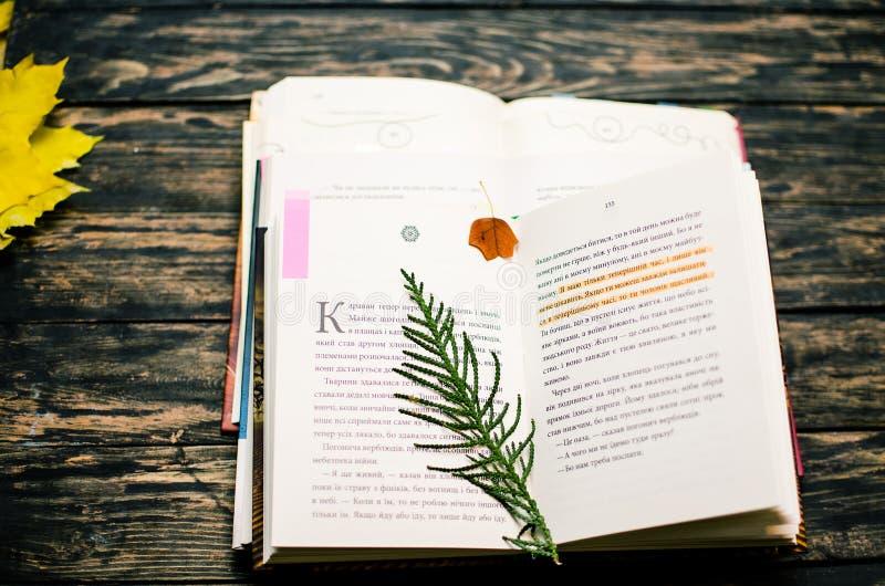 Gorąca herbata z książką w weekend zdjęcia stock