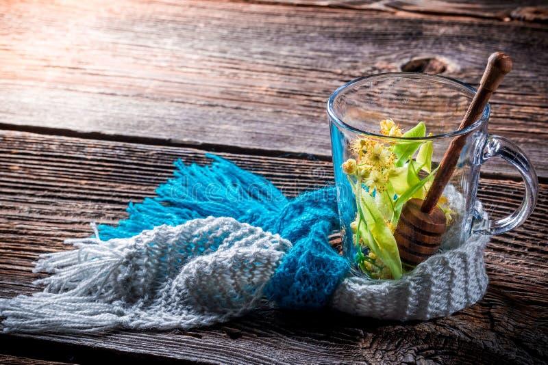 Gorąca lipowa herbata z miodem zdjęcie royalty free