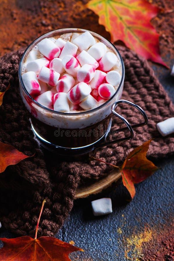 Gorąca miętowa czekolada z marshmallows i malinowym syropem obraz stock