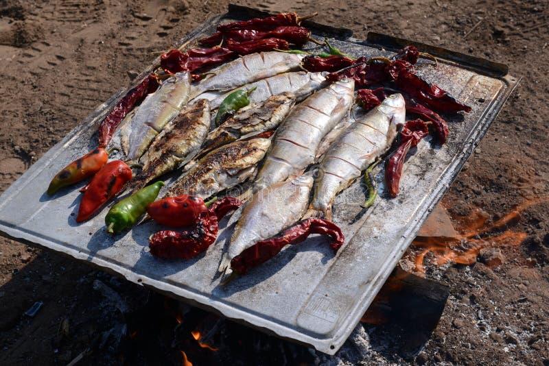 Gorąca ryba na opieczenie niecce Wrzesień 2, 2016 obrazy royalty free