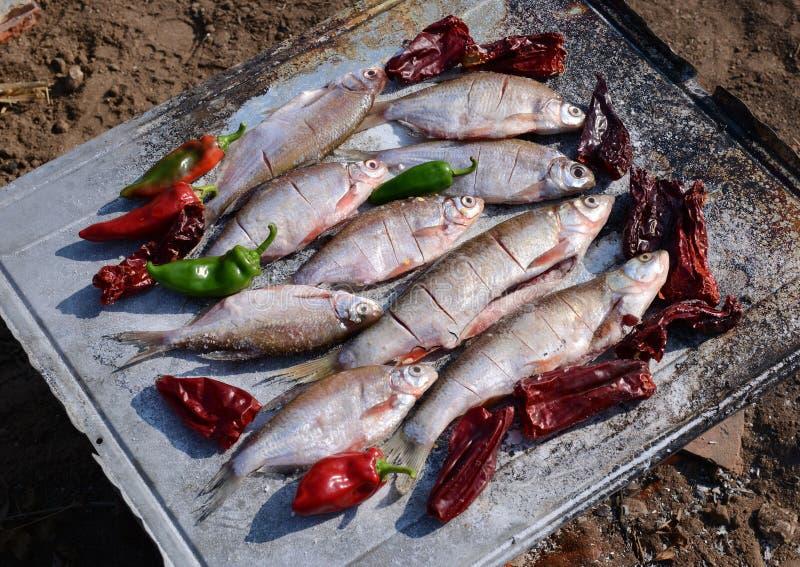 Gorąca ryba na opieczenie niecce Wrzesień 2, 2016 fotografia royalty free