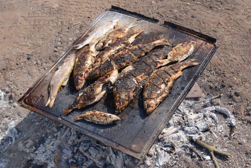 Gorąca ryba na opieczenie niecce Wrzesień 2, 2016 zdjęcia royalty free