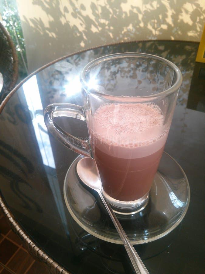 gorące kakao obraz royalty free