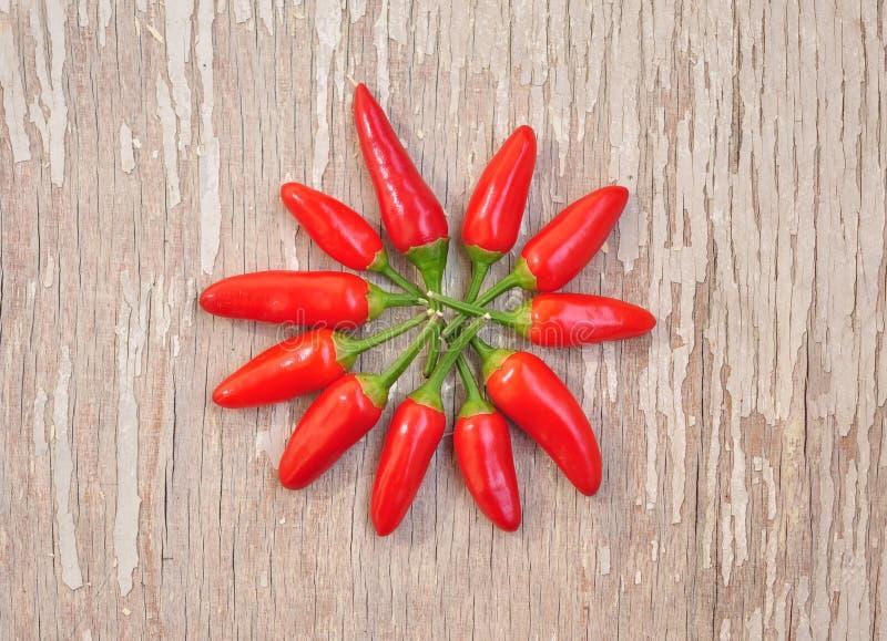 Gorący chłodny pieprzy mandala obrazy stock