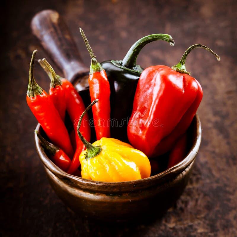 Gorący chili pieprze, habanero słodki pieprz i jalapeno, zdjęcia royalty free