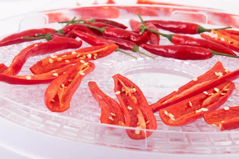 Gorący chili pieprzu odwadnianie zdjęcie royalty free