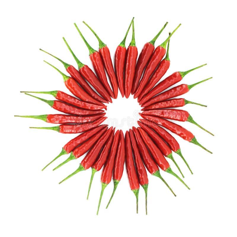 Gorący chili pieprzu okrąg obrazy stock