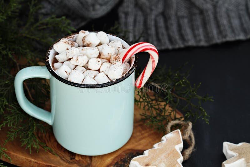 Gorący kakao i marshmallows zdjęcie stock