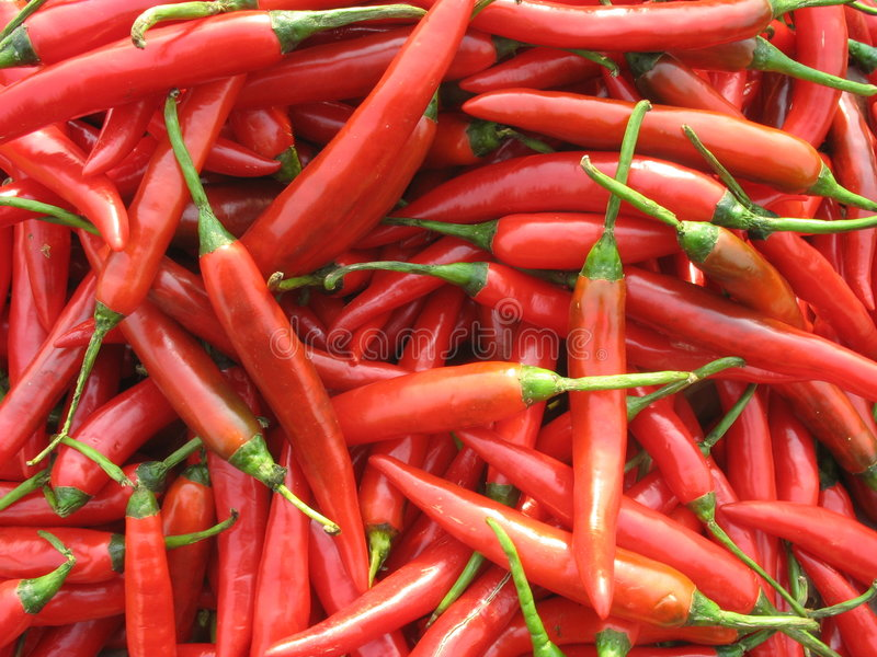 gorący pepper obraz royalty free