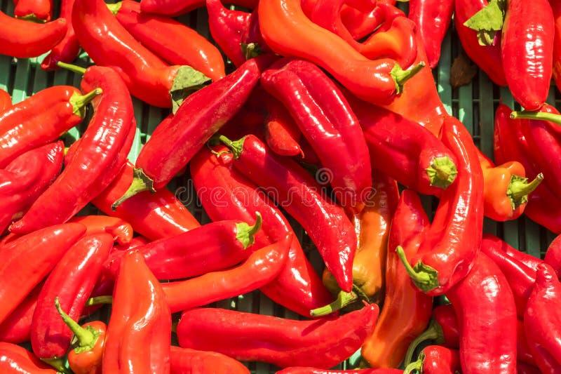 Gorący pieprze w wprowadzać na rynek kram obrazy stock