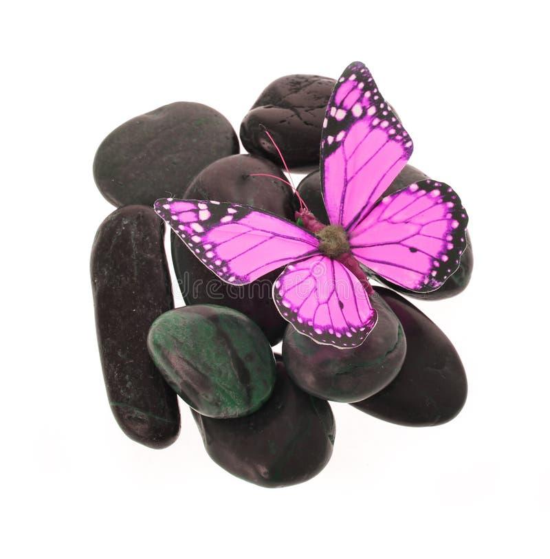 Gorący różowy motyl na kamieniach odizolowywających na biel obrazy stock
