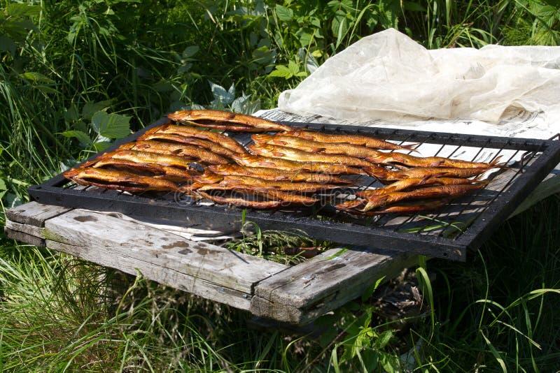 Gorący uwędzony rybi omul od Baikal obraz royalty free