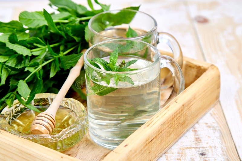 Gorący ziołowy nowy herbaciany napój w szklanym kubku fotografia stock