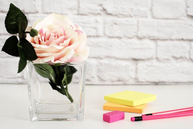 Gorących menchii Projektujący Desktop Ogrodowe róże Projektująca Akcyjna fotografia Produktu Mockup, Graficzny projekt Wzrastał k obraz royalty free