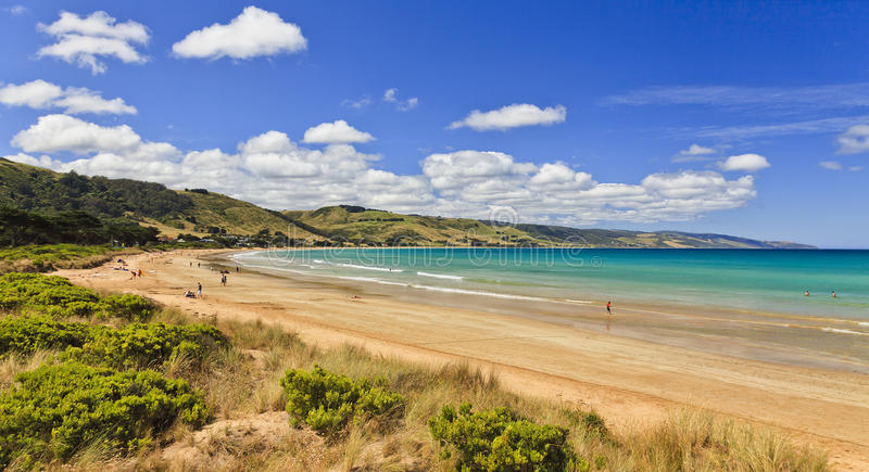 GOR Apollo Beach Left. AUstralian apollo bay beach at summer time with relaxing and leisuring people sunbathing and swimming royalty free stock photography