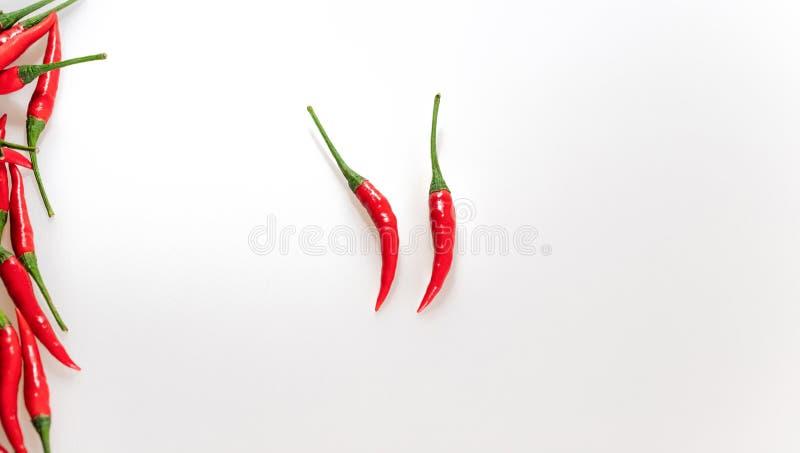 Gor?cy Chili pieprz Na Bia?ym tle Pionowo granica chili pieprze, odgórny widok Czerwoni dojrzali pieprze z zielonymi trzonami zdjęcia stock