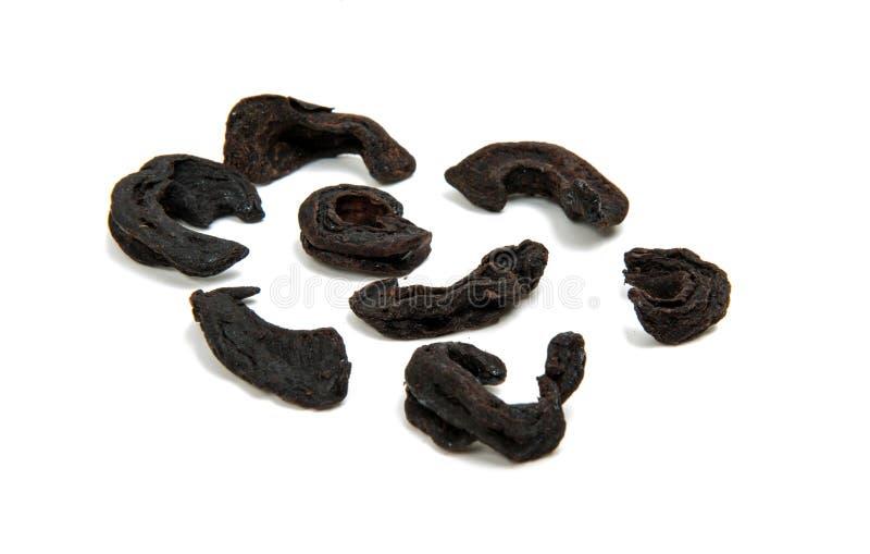 Goraka, garciniacambogia, gedroogd fruitschil royalty-vrije stock afbeelding