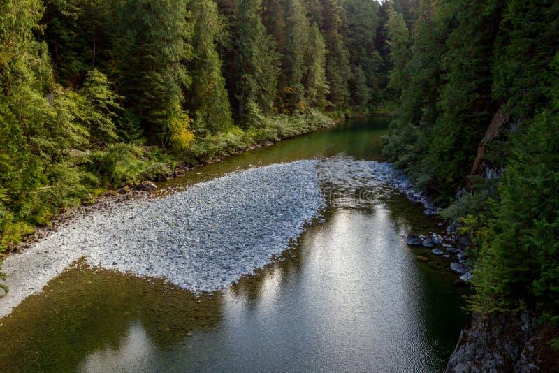 Gordon River royaltyfri foto