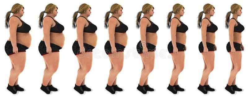Gordura ao tiro magro do perfil da transformação da perda de peso da mulher fotos de stock royalty free