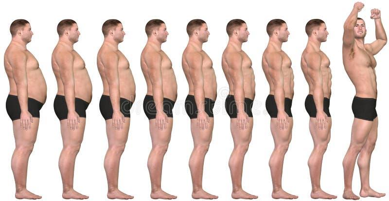 Gordura a caber antes após o sucesso da perda de peso do homem 3D ilustração do vetor