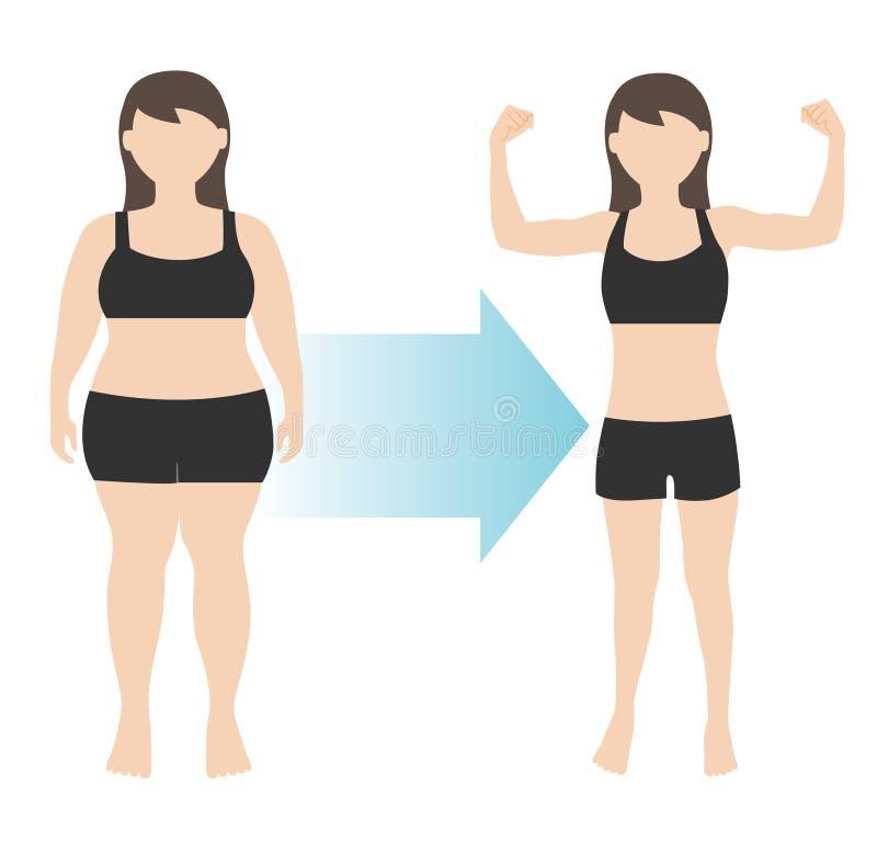 Gordura da transformação do corpo da mulher da perda de peso a caber ilustração do vetor
