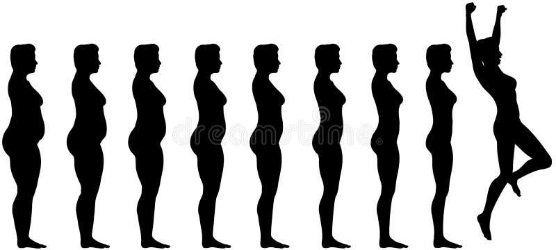 Gordura para caber o sucesso da perda de peso da dieta ilustração do vetor