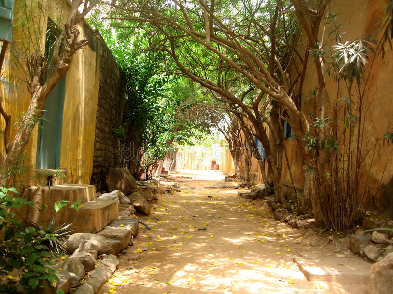 Goree island street - Senegal. The street in Goree island in Senegal in Africa.nGorée is famous as a destination for people interested in the Atlantic slave stock image