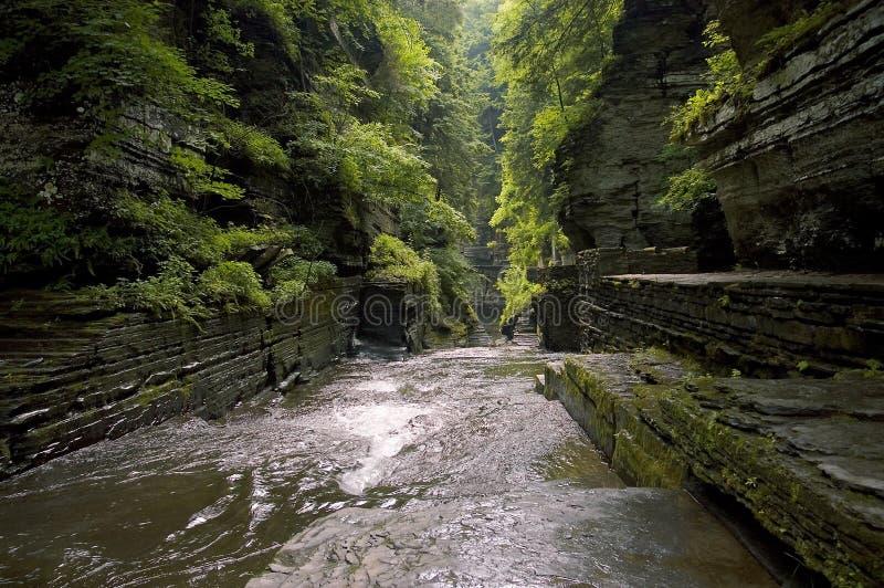 Gorge stock photography