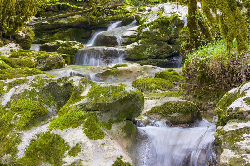 Gorge in Abkhazia stock photos