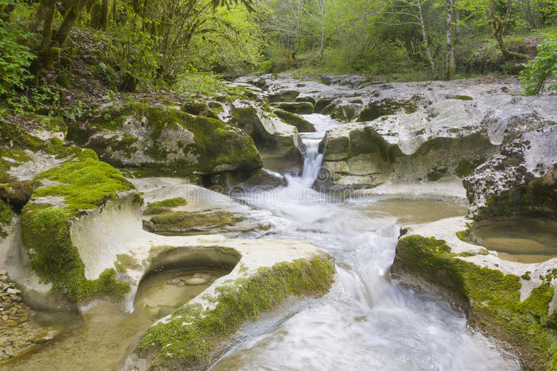 Gorge in Abkhazia royalty free stock photos