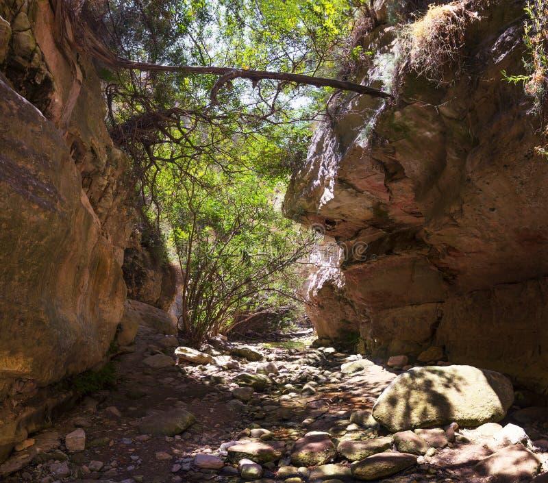 Gorge Avakas Péninsule d'Akamas cyprus photographie stock