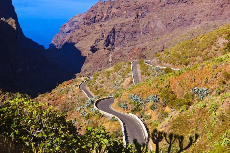 Gorge célèbre Masca chez Tenerife - canari photos libres de droits