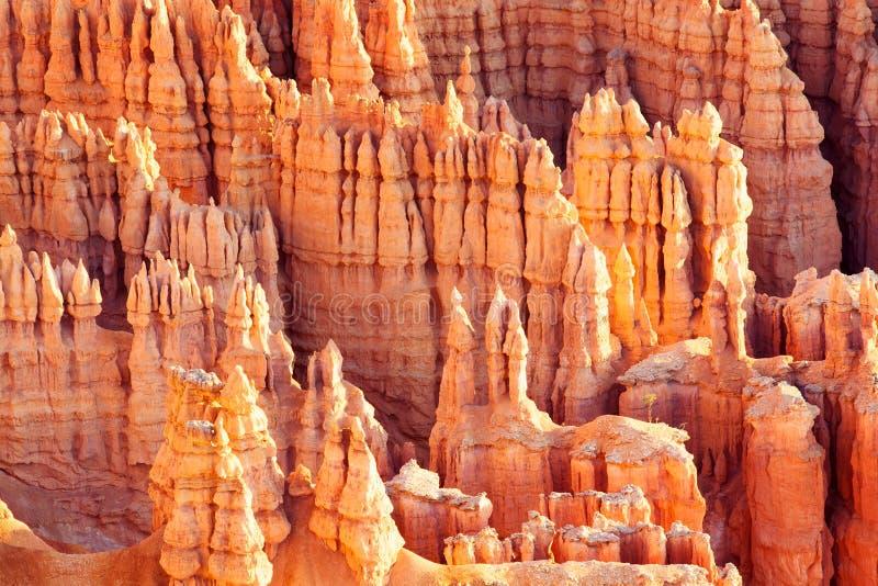 Gorge de Bryce photographie stock libre de droits