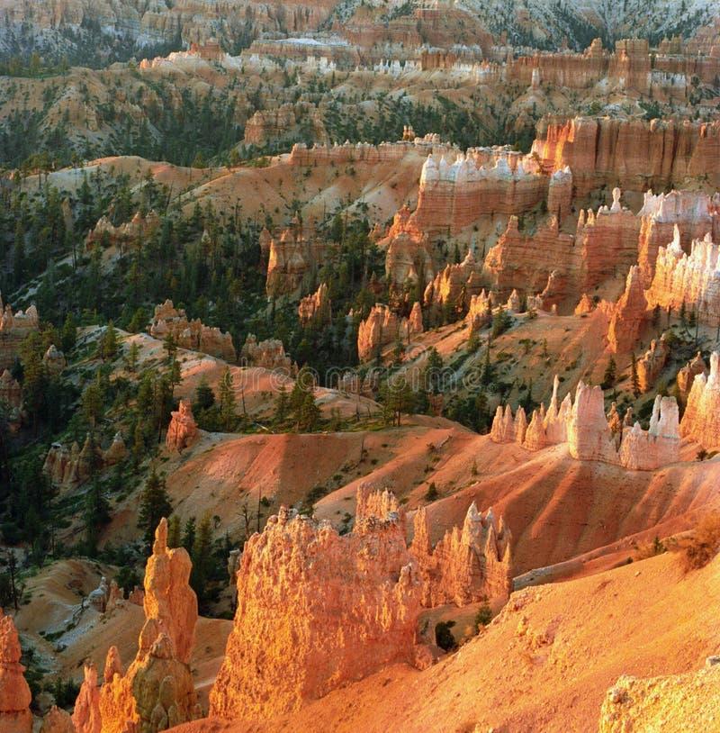 Gorge de Bryce au lever de soleil photographie stock libre de droits