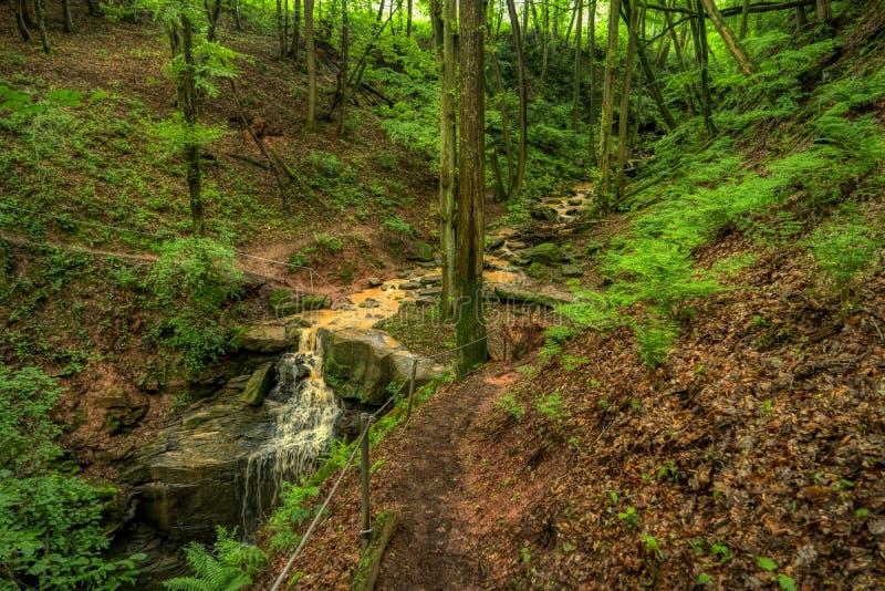 Gorge de Magarethenschlucht le long du sentier de randonnée de fond de Neckarsteig images libres de droits