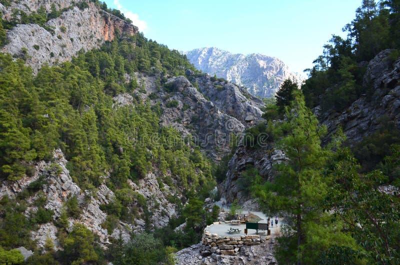 Gorge de montagne, envahie avec des arbres, en canyon de Goynuk près de Kemer, la Turquie image libre de droits