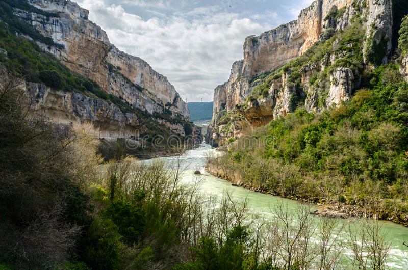 The gorge of Lumbier. Colonies of griffon vultures flying over the cliffs, sheer rock faces where birds nest, a river with clean and fresh water that cuts royalty free stock photography