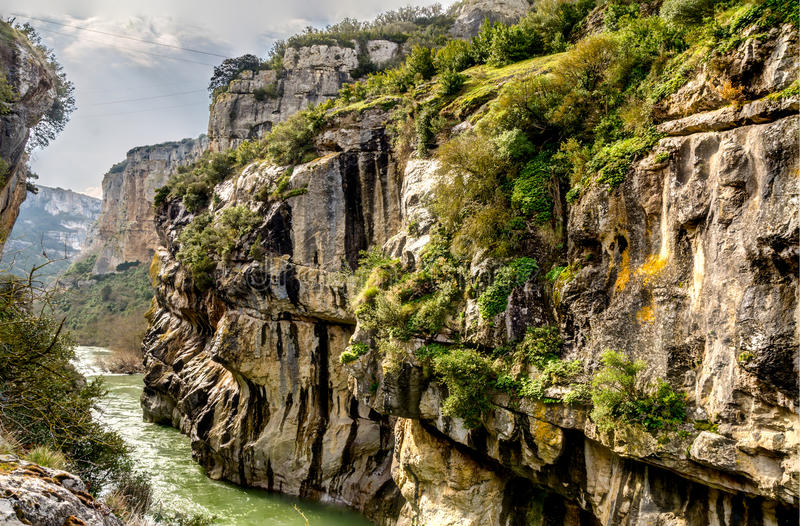The gorge of Lumbier. Colonies of griffon vultures flying over the cliffs, sheer rock faces where birds nest, a river with clean and fresh water that cuts stock photo