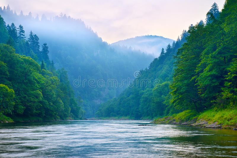 The gorge of mountain river in the morning. Dunajec, Pieniny stock image