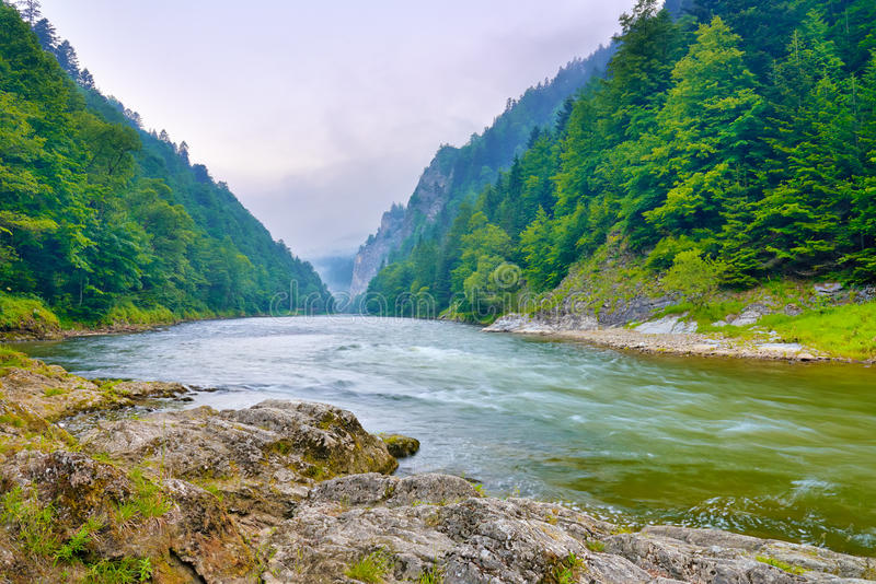 The gorge of mountain river in the morning. Dunajec, Pieniny royalty free stock photos