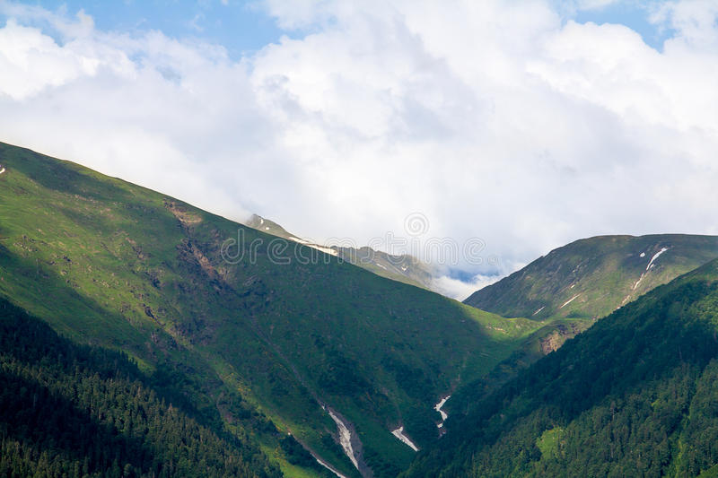 Gorge in the mountains forested with cleft and snow silence and coast. Wildlife gorge in the mountains forested with cleft and snow silence and coast stock photography