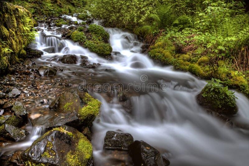 Gorge Orégon du fleuve Columbia images stock