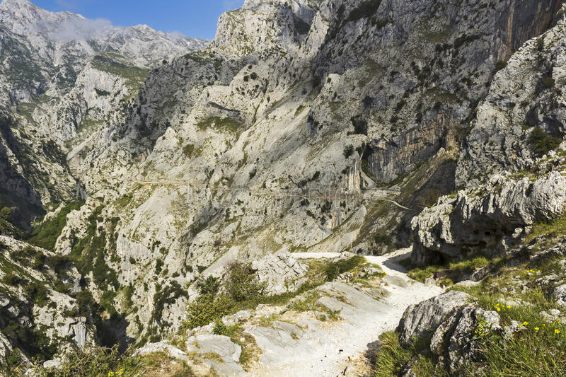 Gorge of River Cares in Asturias stock image