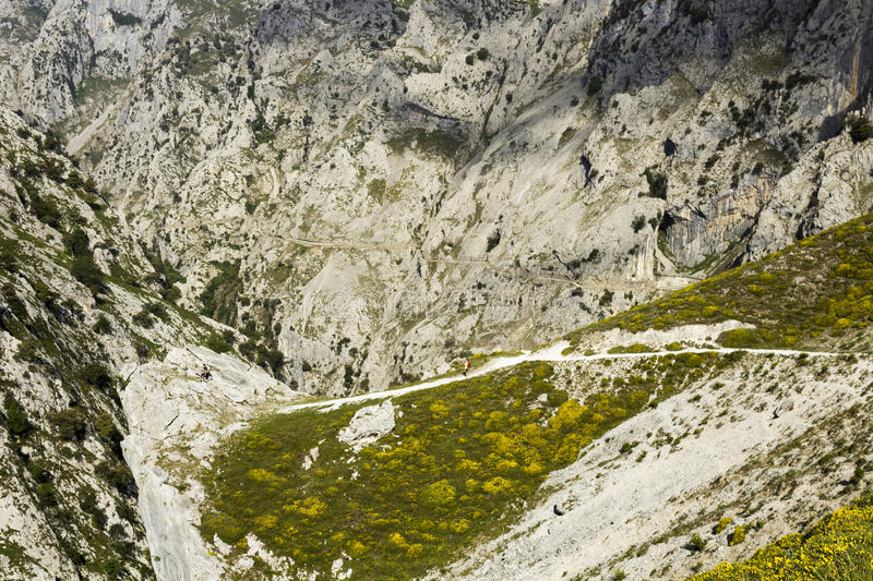 Gorge of River Cares in Asturias royalty free stock photo