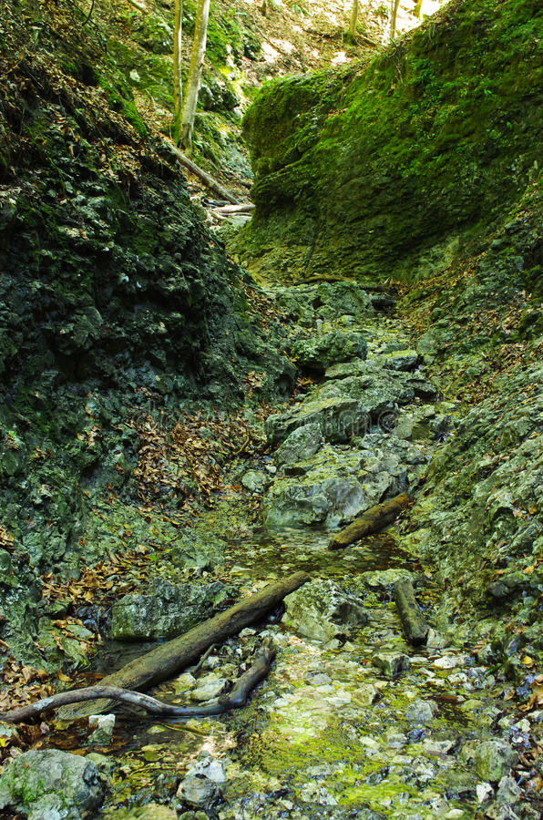 Gorge of Slovak Paradise. Path deep in the gorge of Slovak Paradise royalty free stock photos