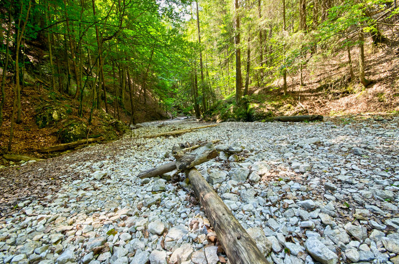 Gorge of Slovak Paradise. Path deep in the gorge of Slovak Paradise stock photos