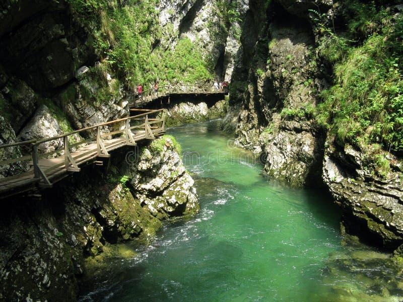 Gorge Vintgar стоковое изображение rf