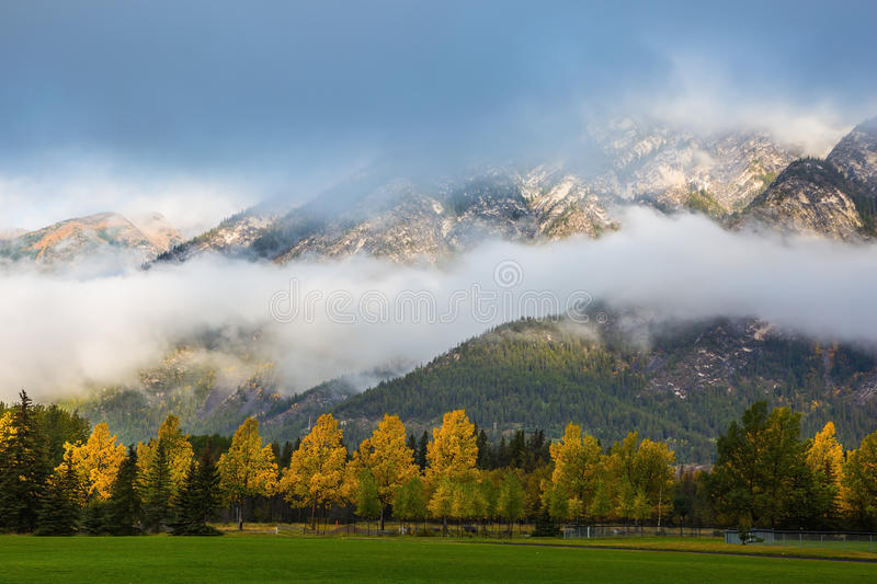 Gorgeous autumn in the Rocky Mountains stock photography